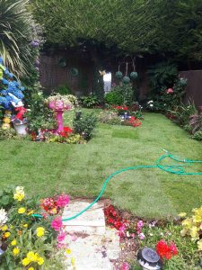 New turf on a lawn in Kent