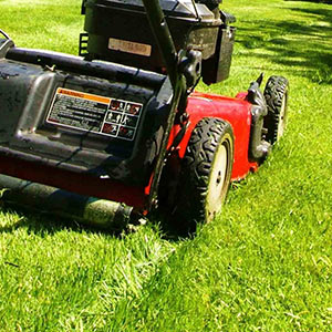 Mowing fresh health lawn grass in Kent Sittingbourne UK